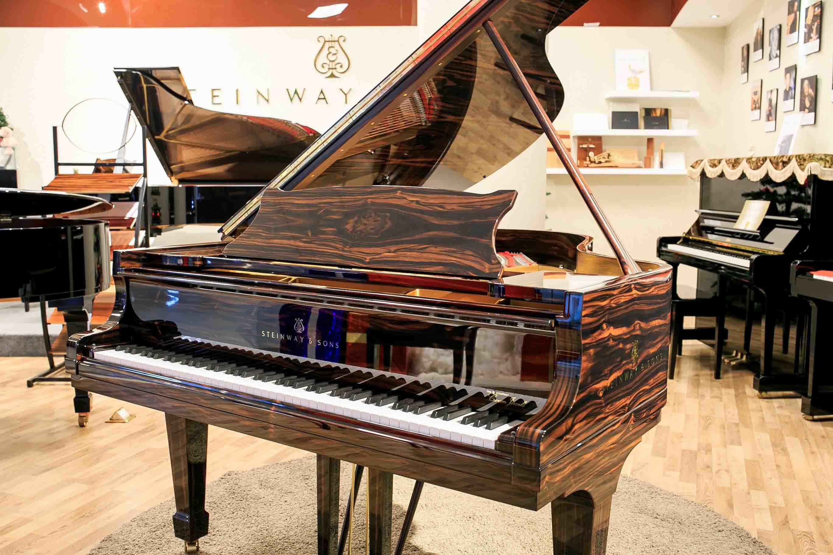 Địa chỉ bán đàn piano giá rẻ tại tphcm - steinway