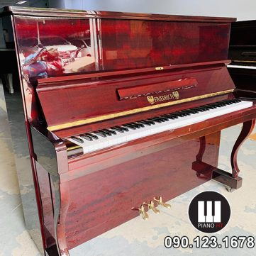 đàn piano Friedrich Pianoht 01