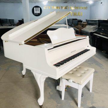 Zimmermman piano 01